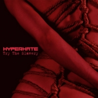 Hyperhate. Try The Slavery. EP. 2012