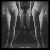 Der Noir. Numeri e Figure. 2013